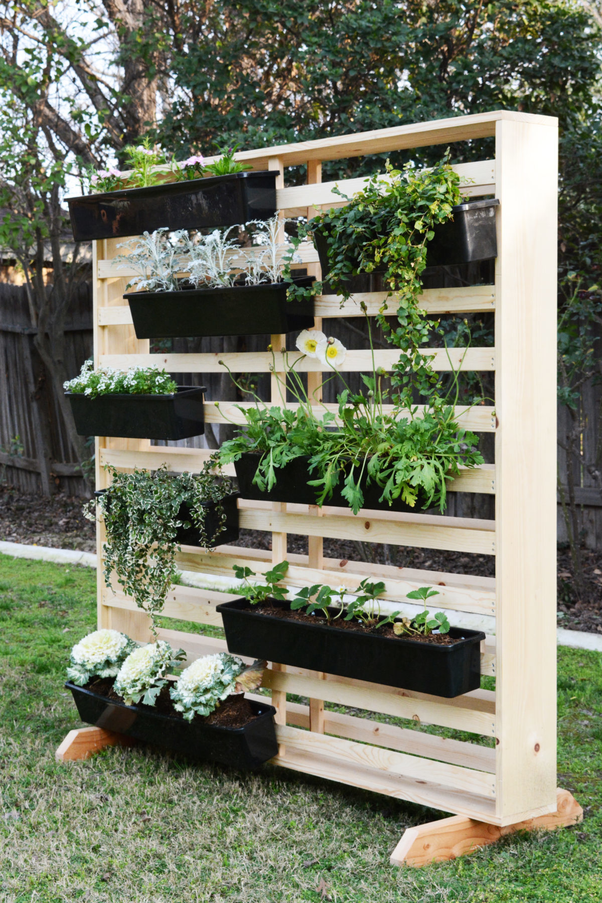 DIY Living Wall with Moveable Planters - Oleander + Palm